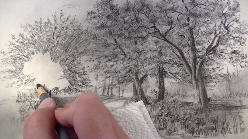 Next Highlights And Lighter Values Are Erased Out Using A Vinyl Eraser Breaks Of Light Added In Around The Trees