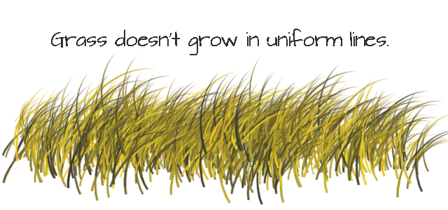 grass drawing images. understand how grass grows drawing images s