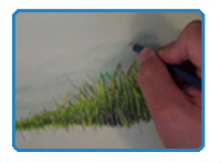 How to Draw Grass with Colored Pencils