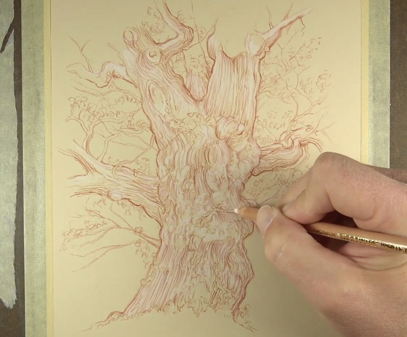 Adding white charcoal to the tree
