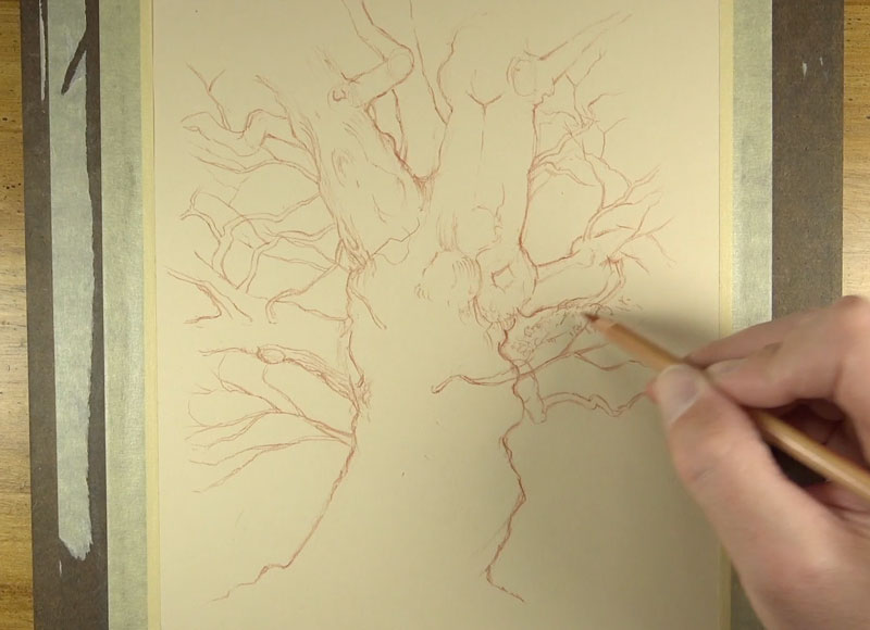 Enhancing line quality on the tree trunk
