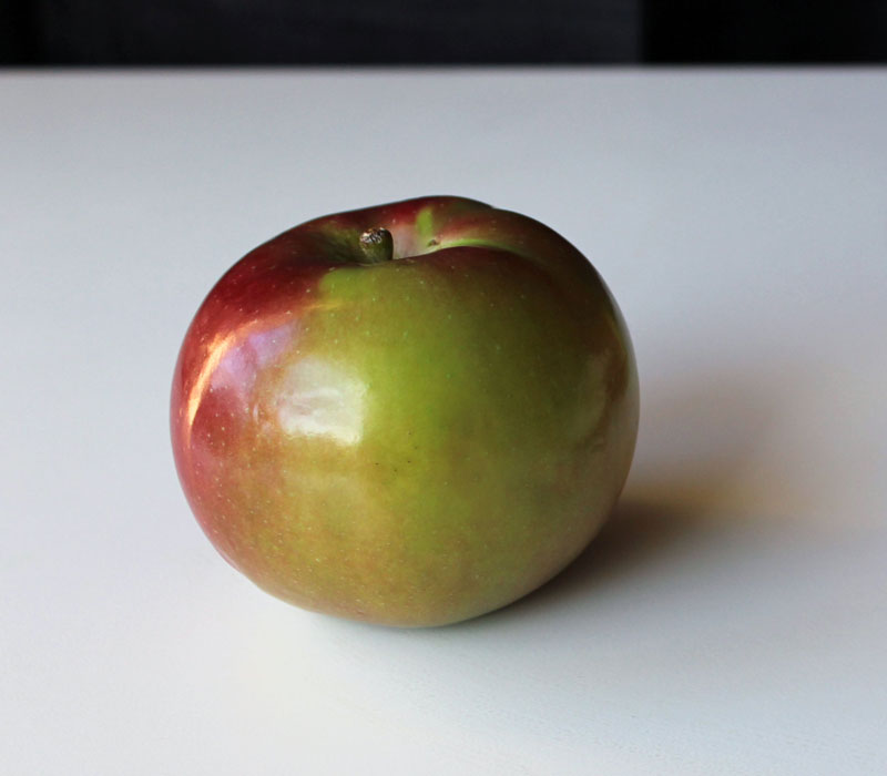 Apple Photo Reference