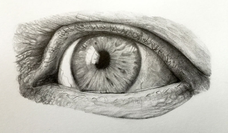 Realistic pencil drawing of an eye