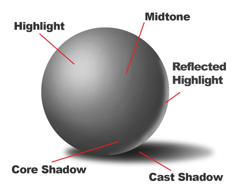 Form And Value In Art : How to draw a sphere with labeled shadows