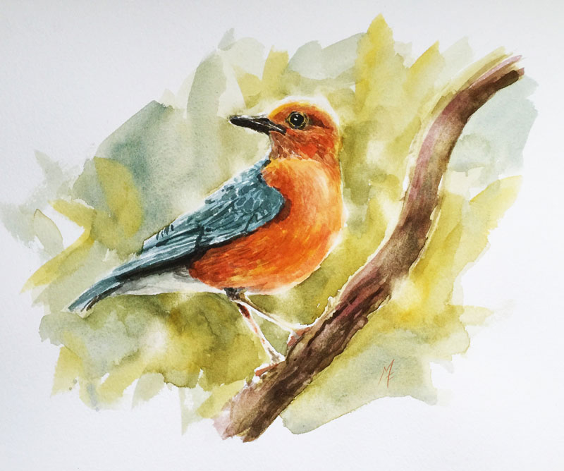 Watercolor Sketch - How To Paint A Bird