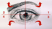How to draw an eye step by step - course module