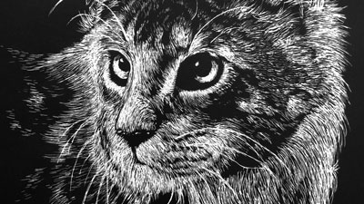 Scratchboard Lesson - Cat