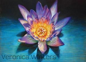 Artist Veronica Winters