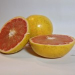 Grapefruit Photo Reference 2