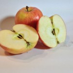 Apple Photo Reference 2