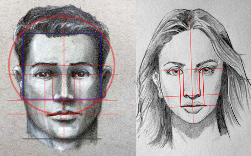 Basic Facial Proportions