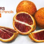 Markers and Colored Pencils Blood Oranges Time Lapse