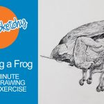 Sketch a Frog