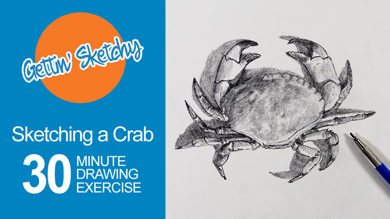 Timed Drawing Exercise - Crab