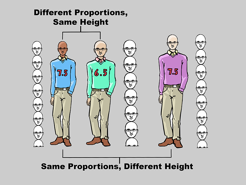 Human Standing Proportions