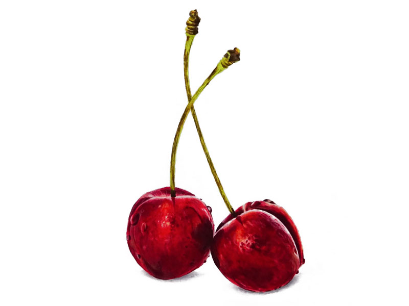 How to Draw Cherries