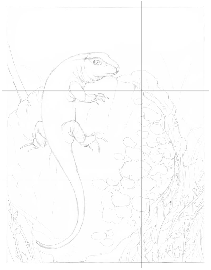 Checking composition with gridlines