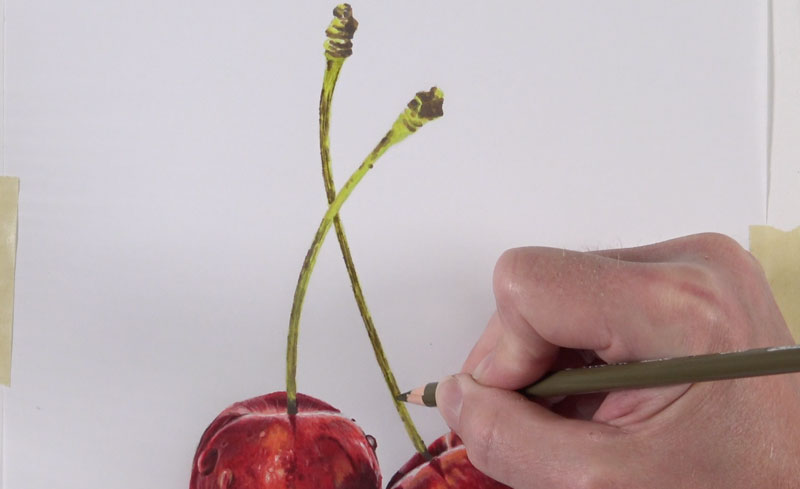 Applying colored pencils to the stem