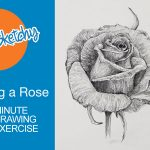 How to sketch a rose with pencil