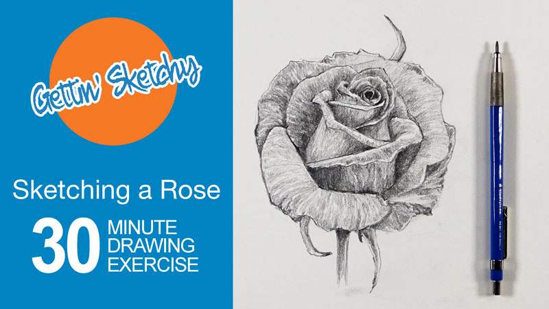 Timed Sketching Exercise - Rose