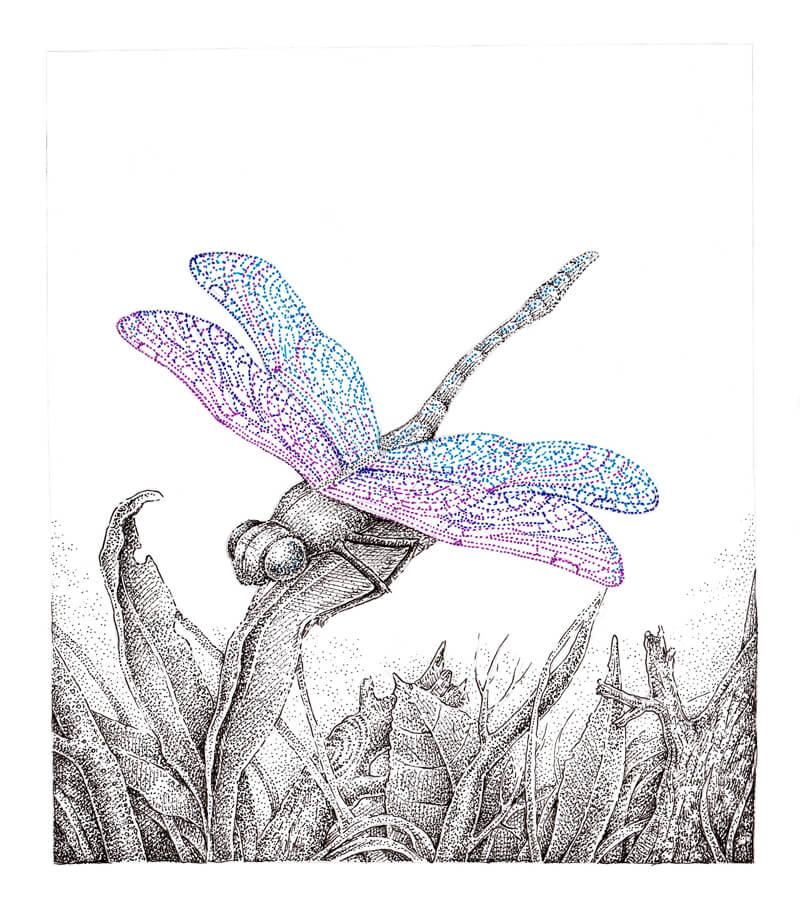 Stippling with color ink
