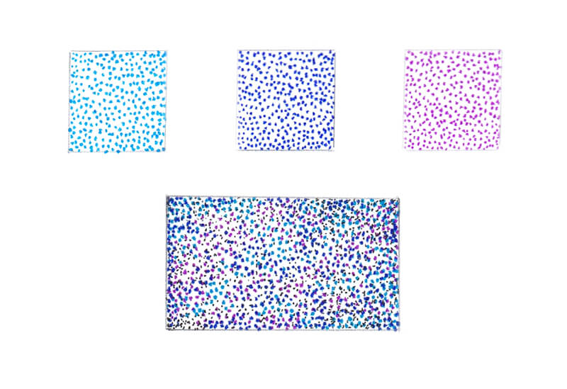 Stippling with different colors