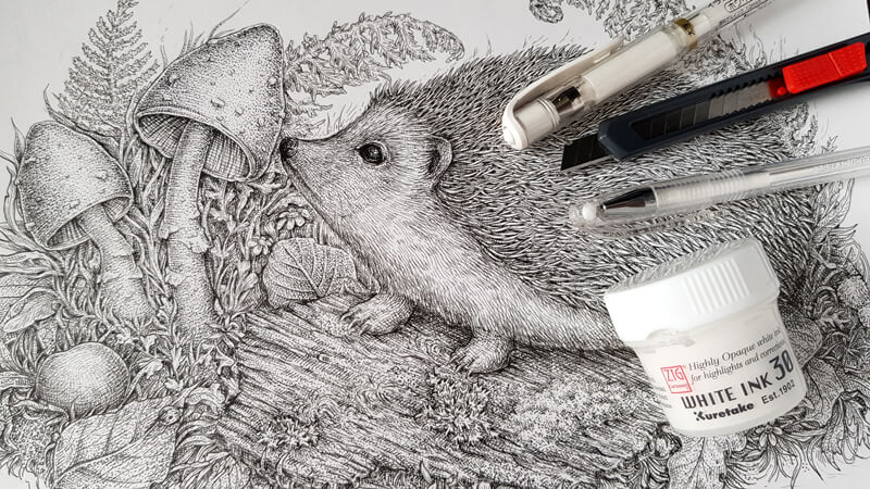 How to Fix Mistakes in a Pen and Ink Drawing