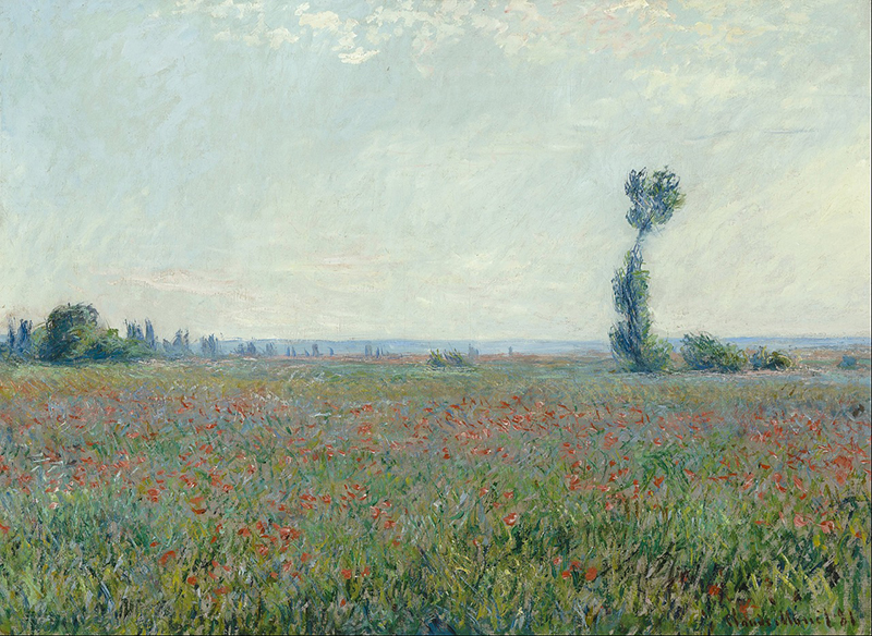 Monet Illusion of Space