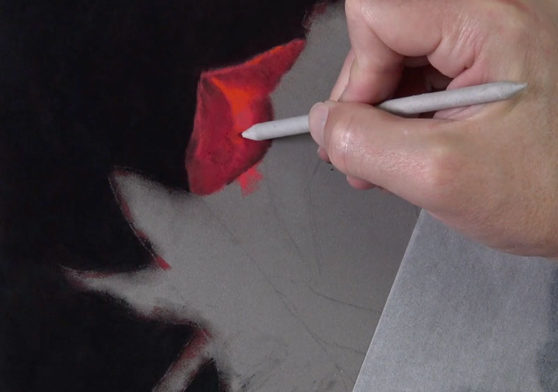 Blending shadows on the rose petal with a blending stump