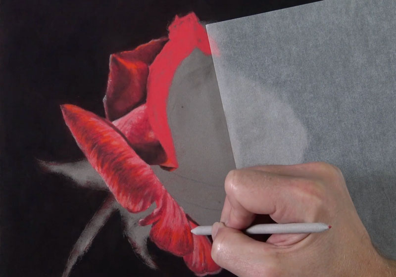 Developing the texture on the rose