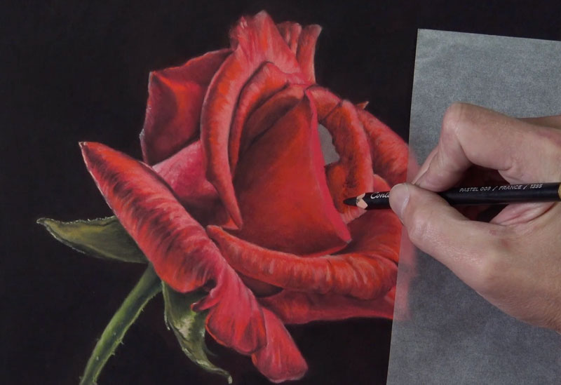 Drawing the center of the rose petals