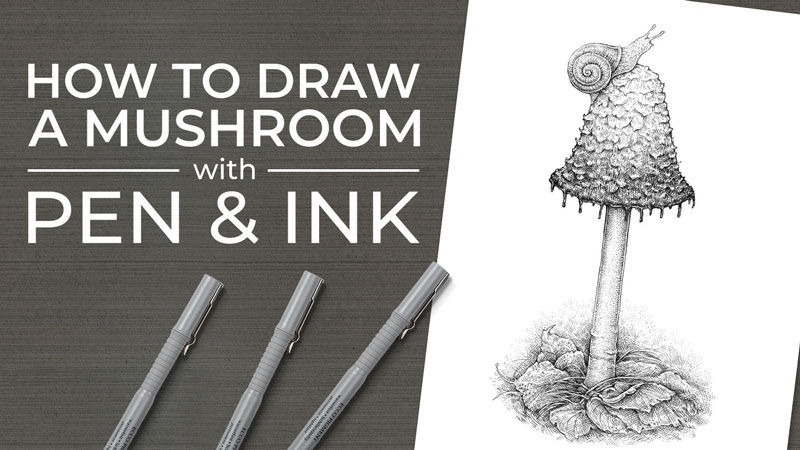 How to Draw a Mushroom - Pen and Ink