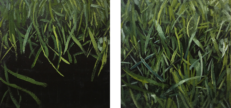 Painting exercise 3 - Painting grass - completed painting