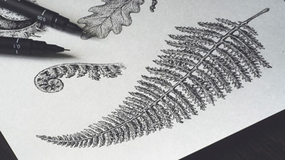 Nature Drawing with Pen and Ink