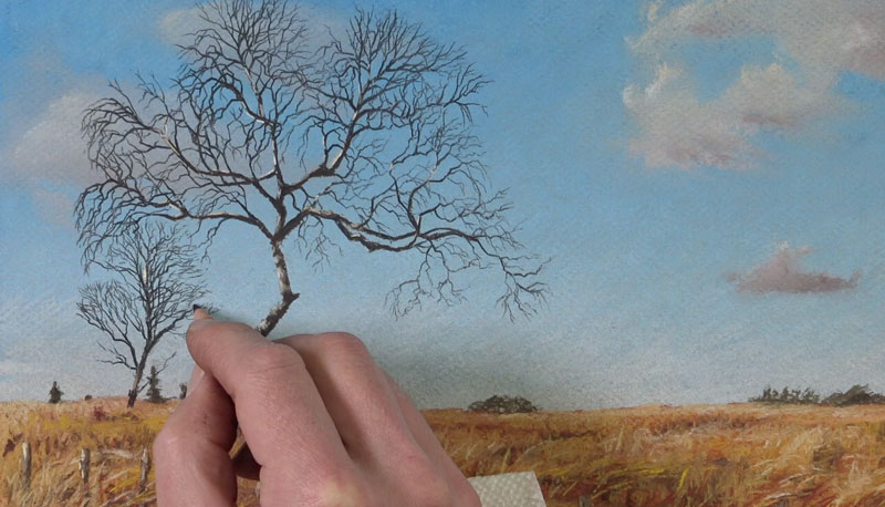 Drawing trees with pastel pencils