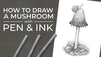 How to Draw a Mushroom with Pen and Ink