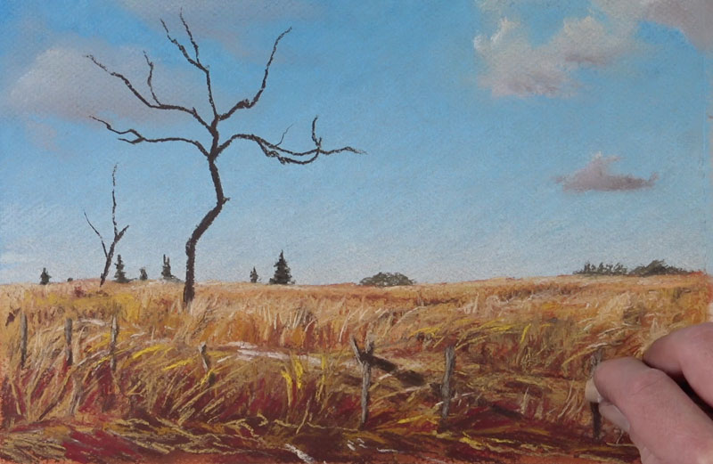 Drawing grass with pastels in the foreground