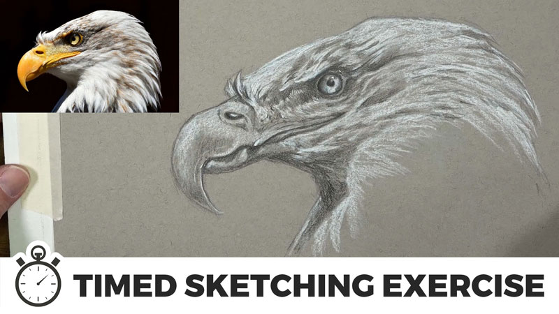 Timed-sketching-exercise-eagle