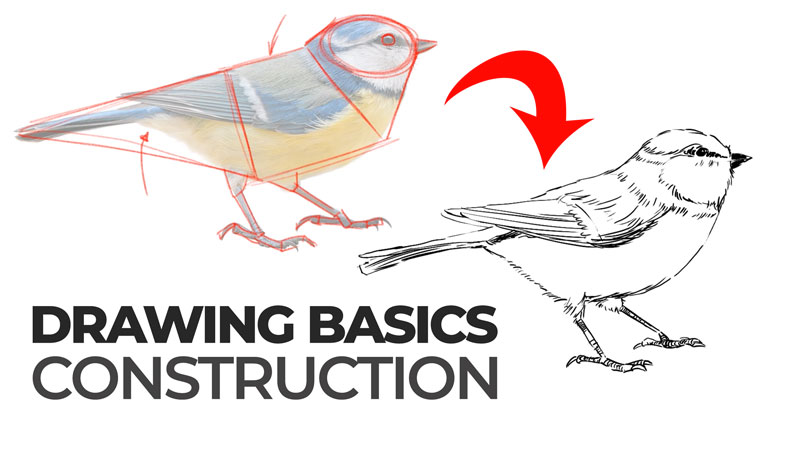 Drawing Basics - Construction