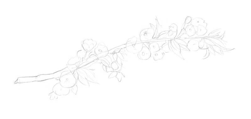 Quick sketch of the flowers