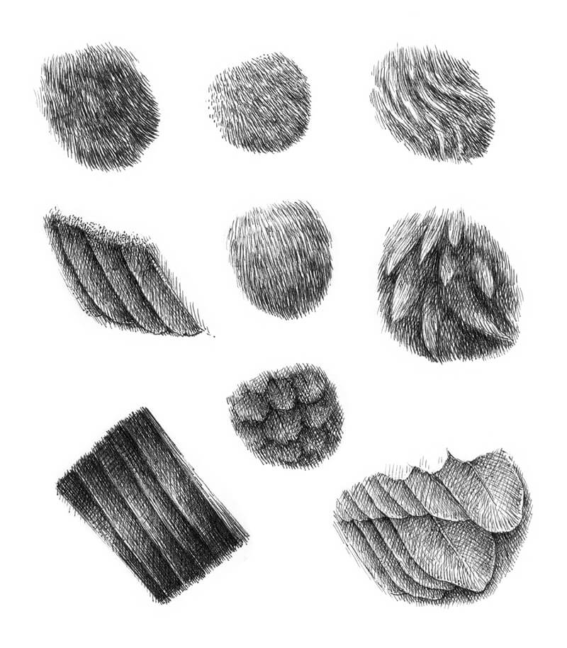 Drawing feather textures with ink