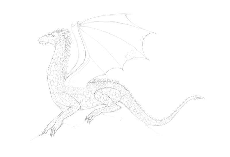 Completed pencil sketch of a dragon