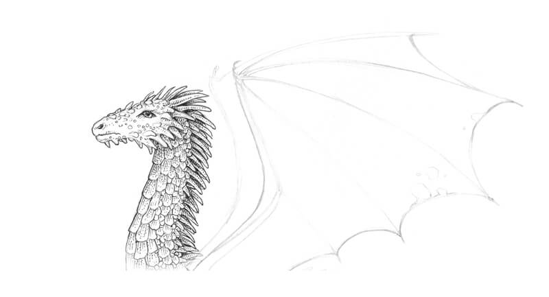 First ink applications to the drawing of a dragon