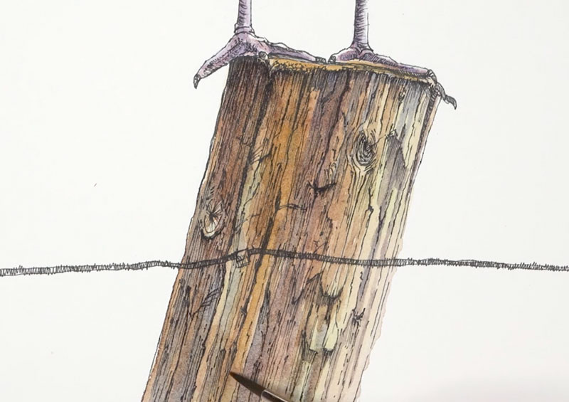 Finishing the watercolor washes on the wooden post