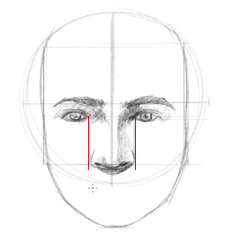 How to draw a face from the front - step - 6 - Locate and draw the nose