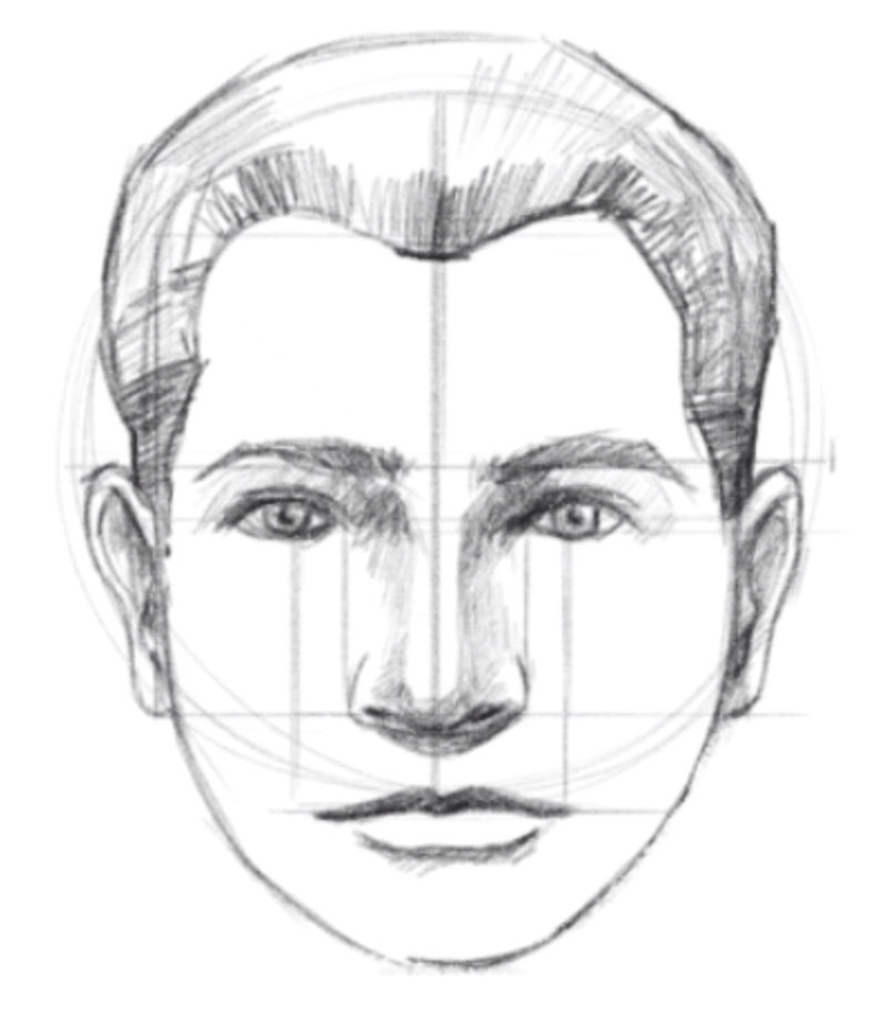 How To Draw A Face Facial Proportions