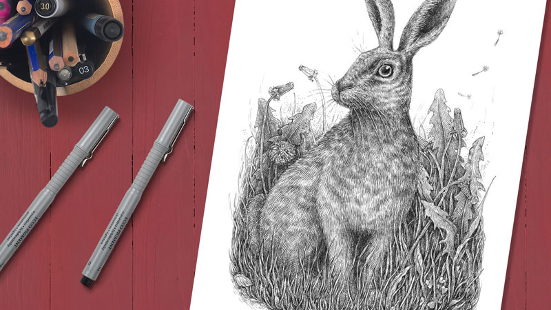 How to draw a rabbit with pen and ink
