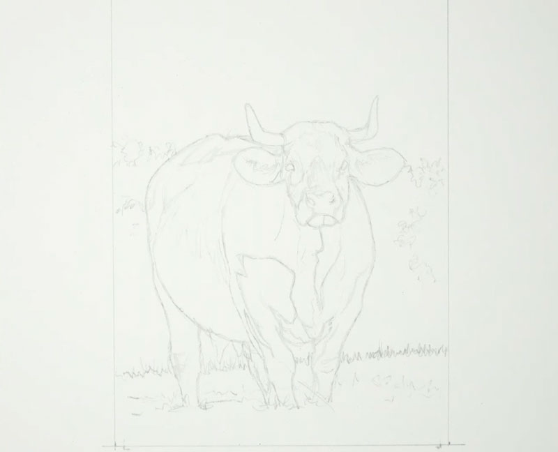 Cow in a Field - Pen and Ink with Watercolor