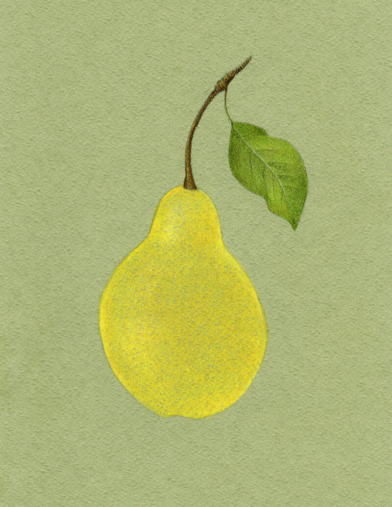 Adding color to the body of the pear