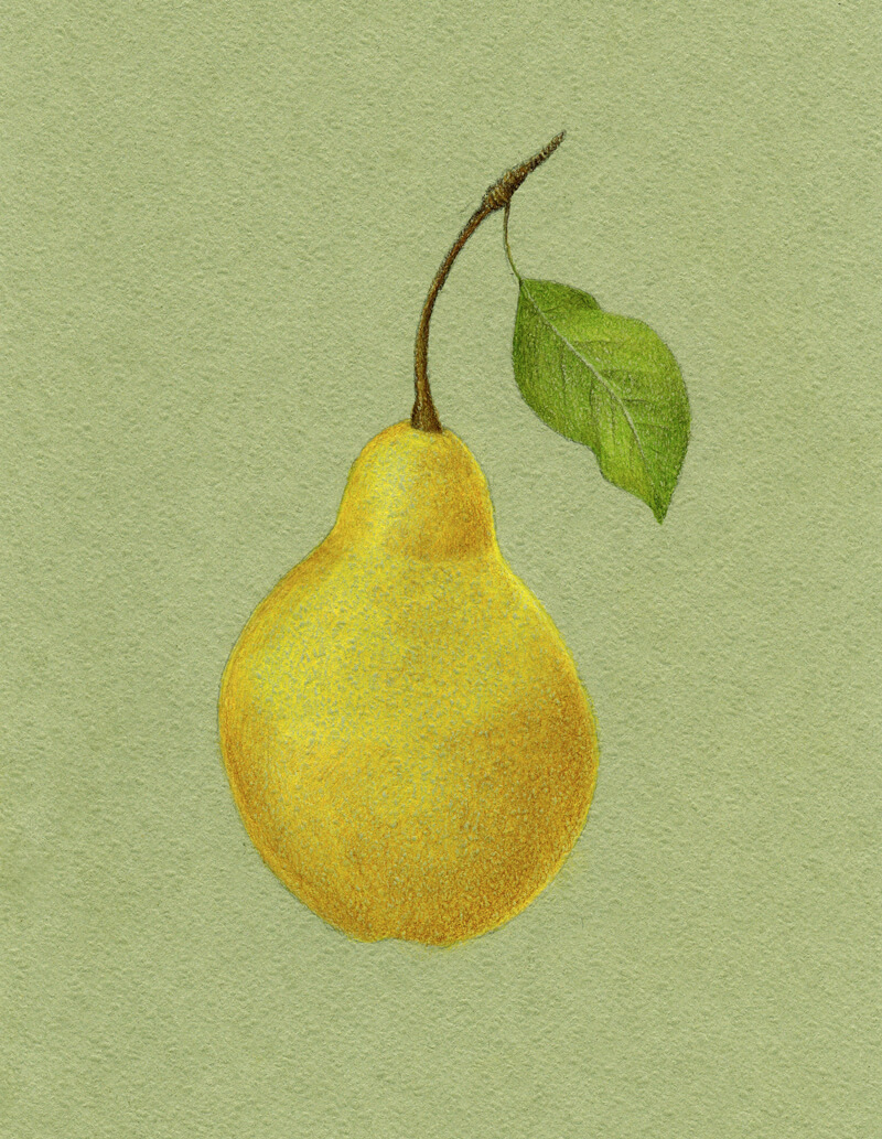 Adding core shadow to the body of the pear